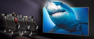 shark-screen-1100x460c